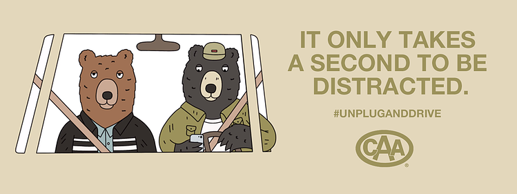 Image_Distracted-Driving_Bears