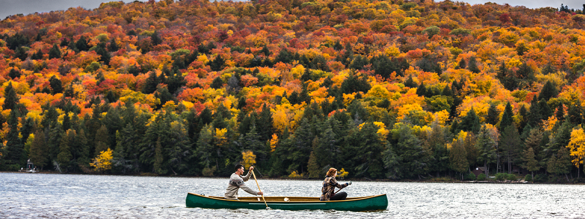 Man and woman canoeing on a lake in Algonquin Park during fall