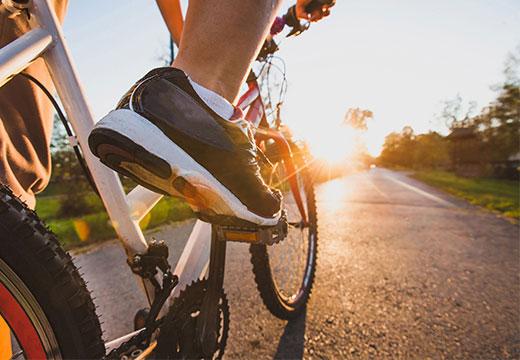 Cyclist on biking trail in Niagara at sunset.